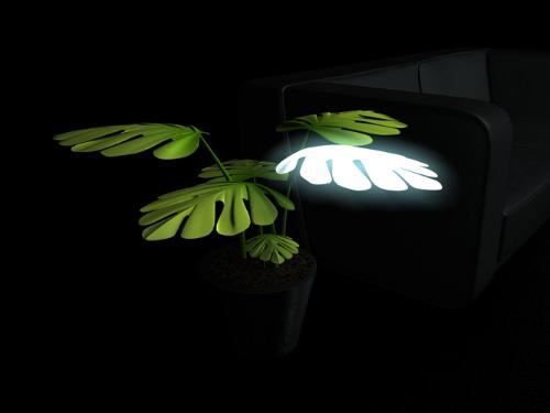 风格创意室内植物极