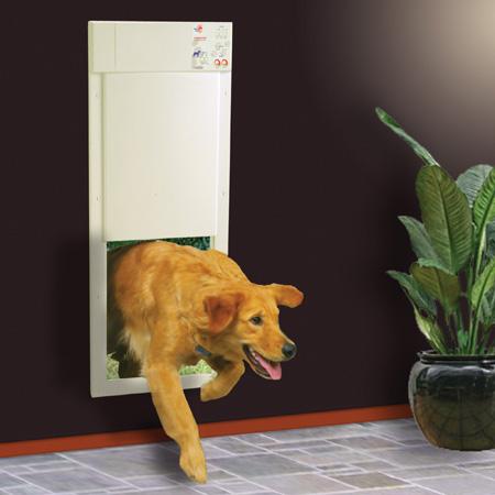 电源自动宠物猫或狗门
